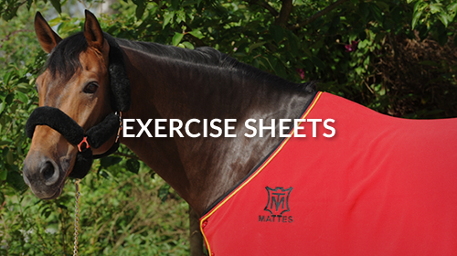 MATTES Exercise sheets